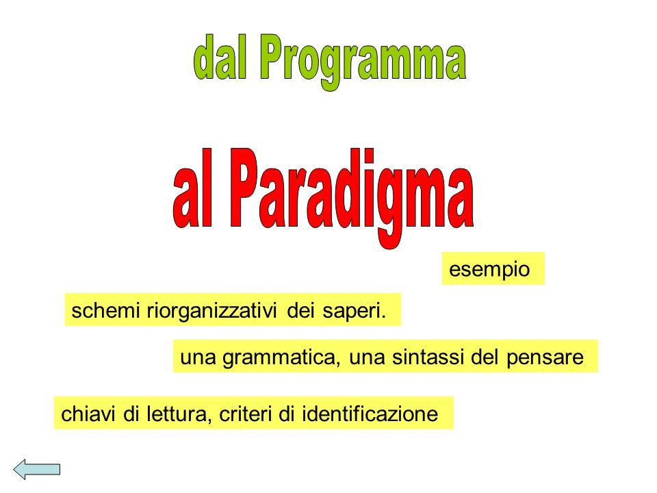 dal Programma al Paradigma esempio schemi riorganizzativi dei saperi.