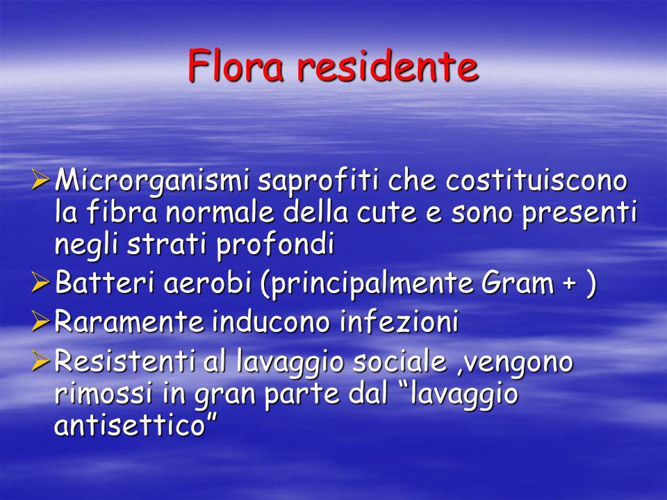 Flora residente Microrganismi saprofiti che costituiscono la fibra normale della cute e sono presenti negli strati profondi.