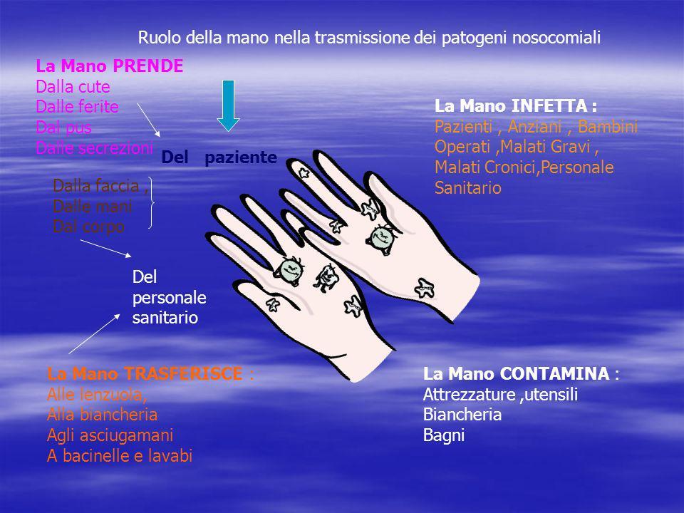 Ruolo della mano nella trasmissione dei patogeni nosocomiali