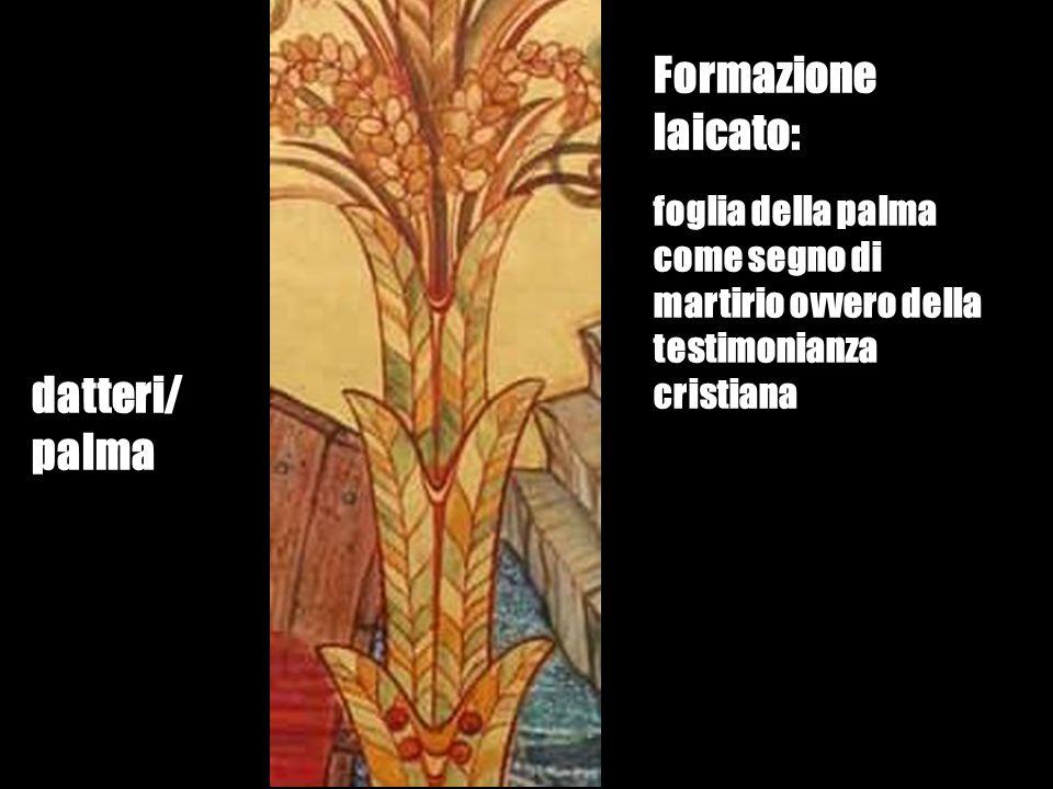 Formazione laicato: datteri/ palma
