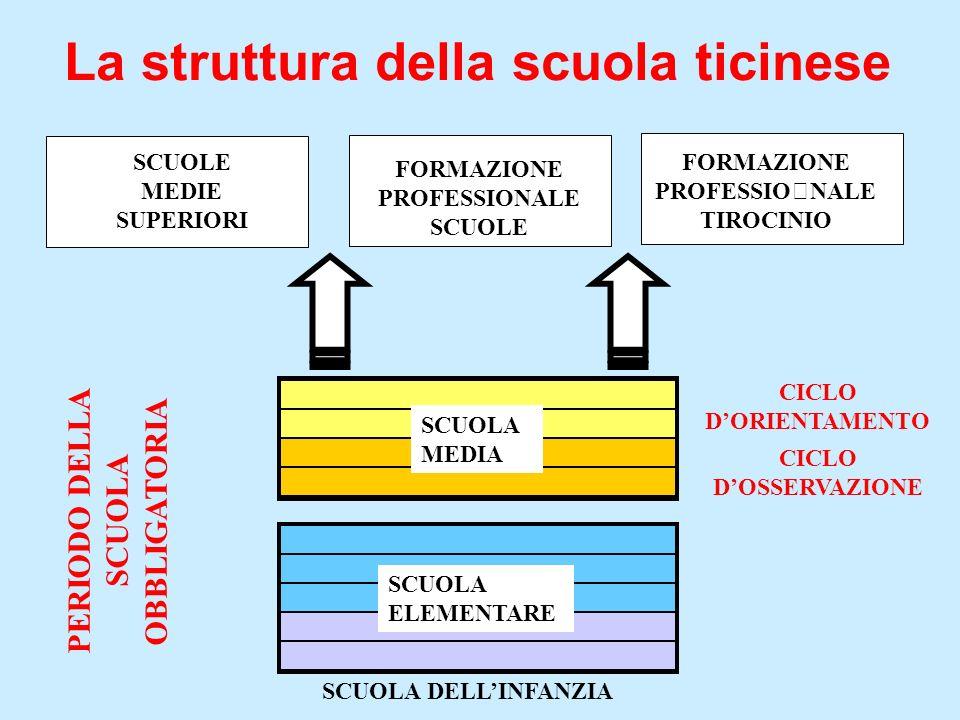 La struttura della scuola ticinese