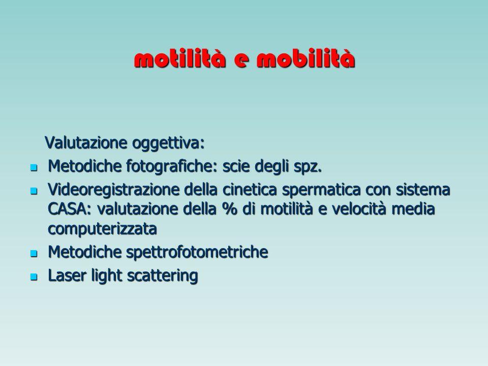 motilità e mobilità Valutazione oggettiva: