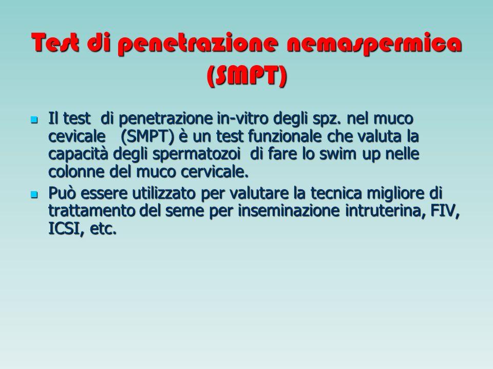 Test di penetrazione nemaspermica (SMPT)