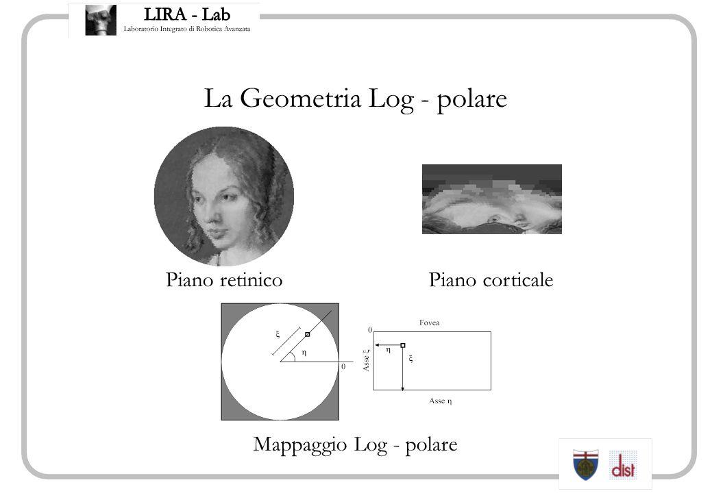 La Geometria Log - polare