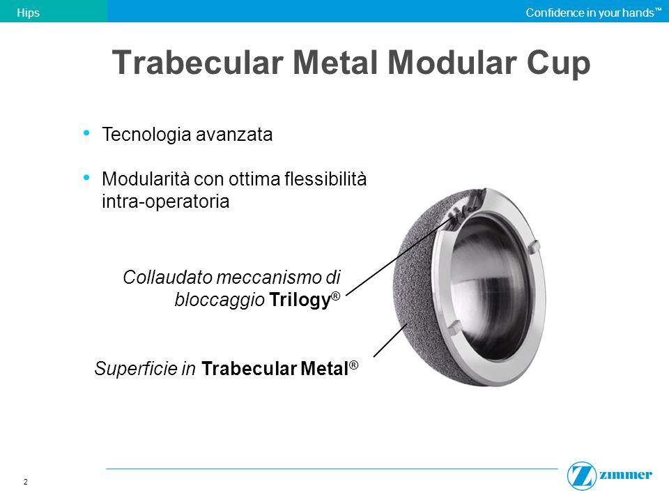 Trabecular Metal Modular Cup