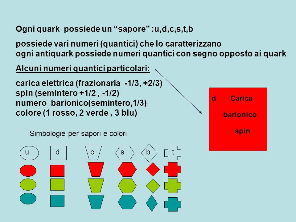 Ogni quark possiede un sapore :u,d,c,s,t,b