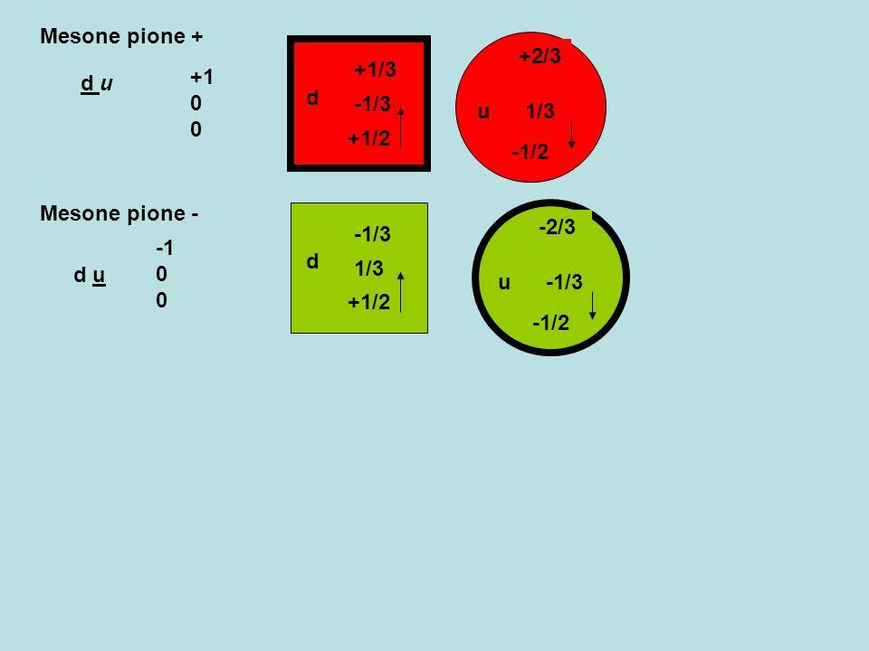 Mesone pione + -1/2. u. +2/3. 1/3. d. +1/3. -1/3. +1/2. +1 0 0. d u. Mesone pione - d. -1/3.