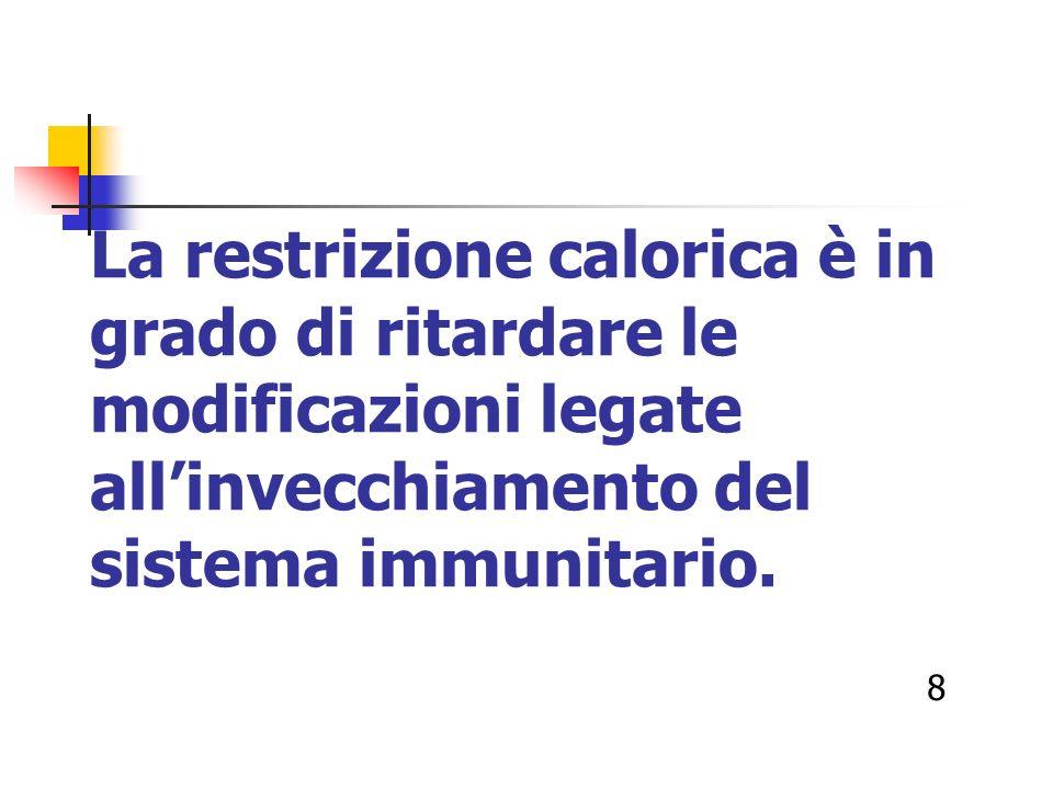 La restrizione calorica è in grado di ritardare le modificazioni legate all'invecchiamento del sistema immunitario.