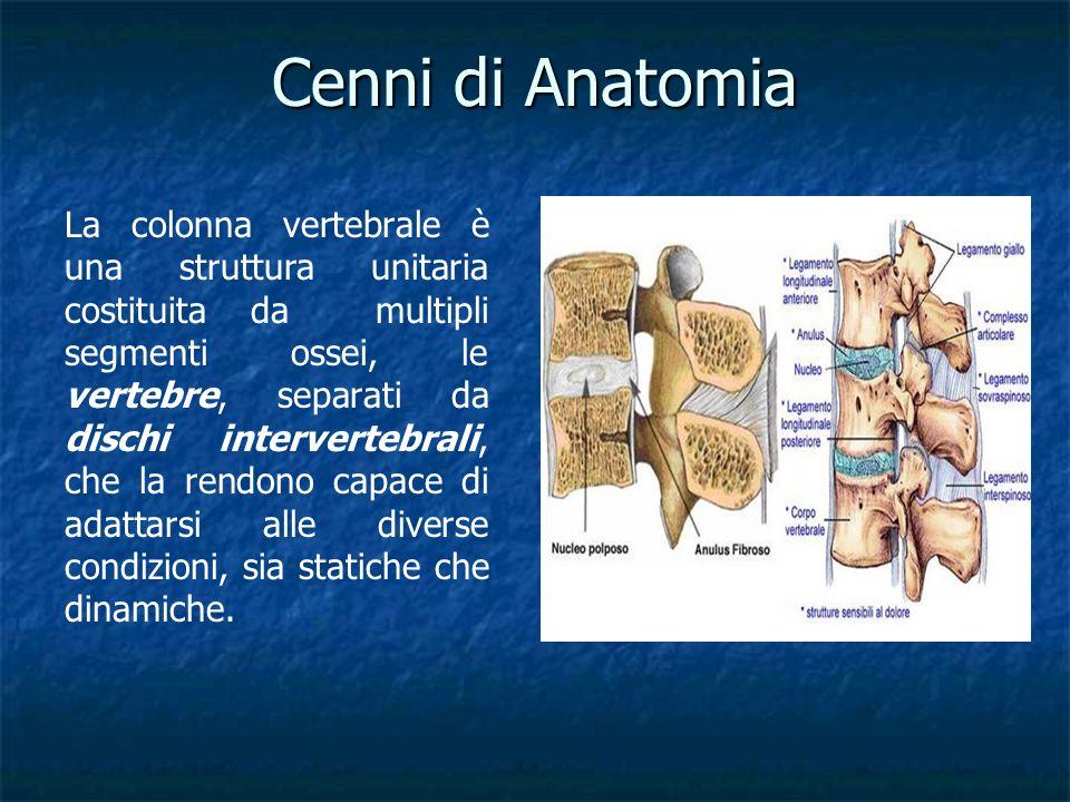 La prof di anatomia - 2 9