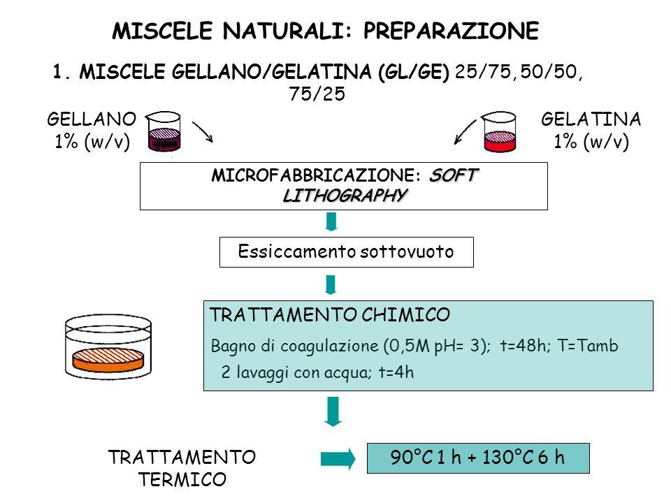 MISCELE NATURALI: PREPARAZIONE MICROFABBRICAZIONE: SOFT LITHOGRAPHY