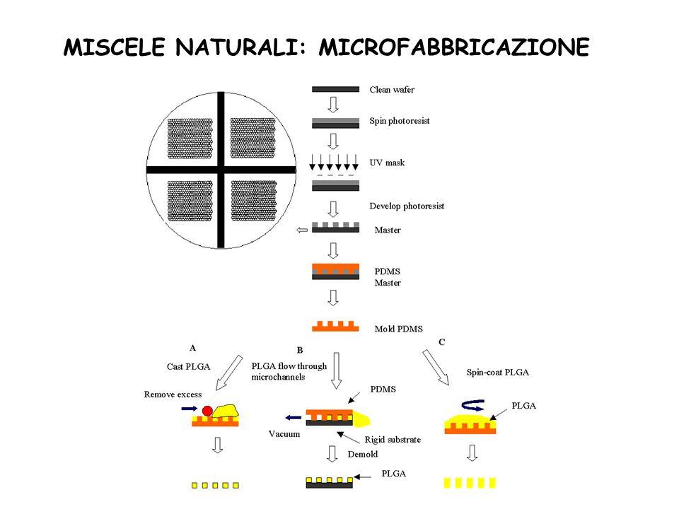 MISCELE NATURALI: MICROFABBRICAZIONE