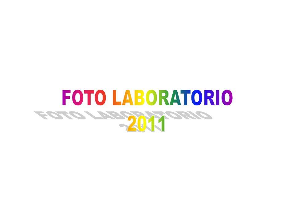 FOTO LABORATORIO 2011