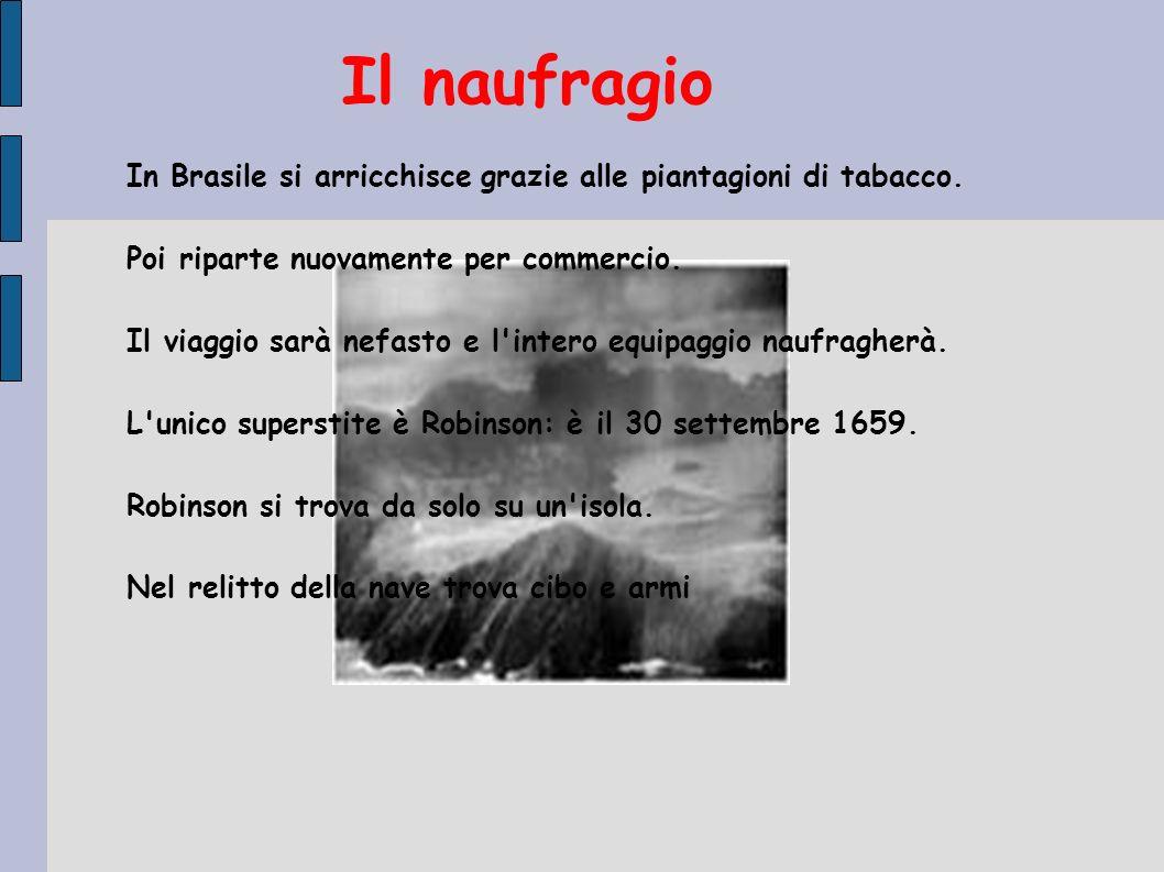 Il naufragio In Brasile si arricchisce grazie alle piantagioni di tabacco. Poi riparte nuovamente per commercio.