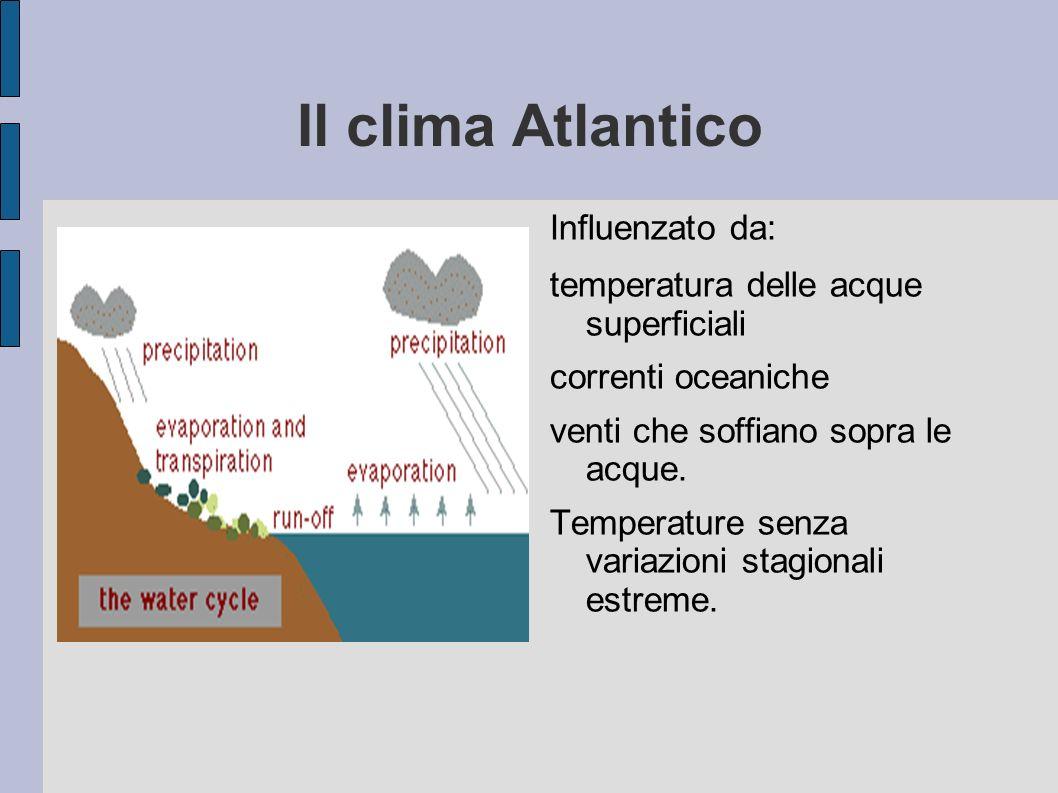 Il clima Atlantico Influenzato da: