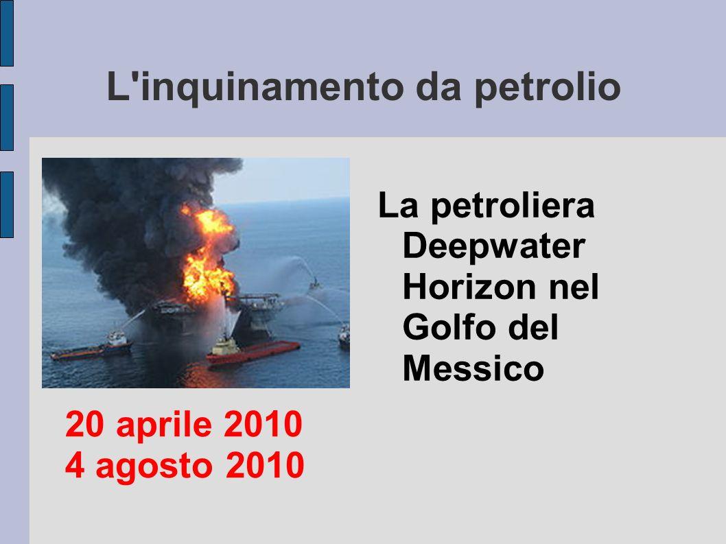 L inquinamento da petrolio