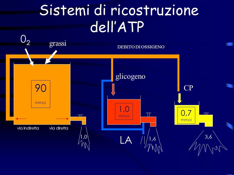 Sistemi di ricostruzione dell'ATP