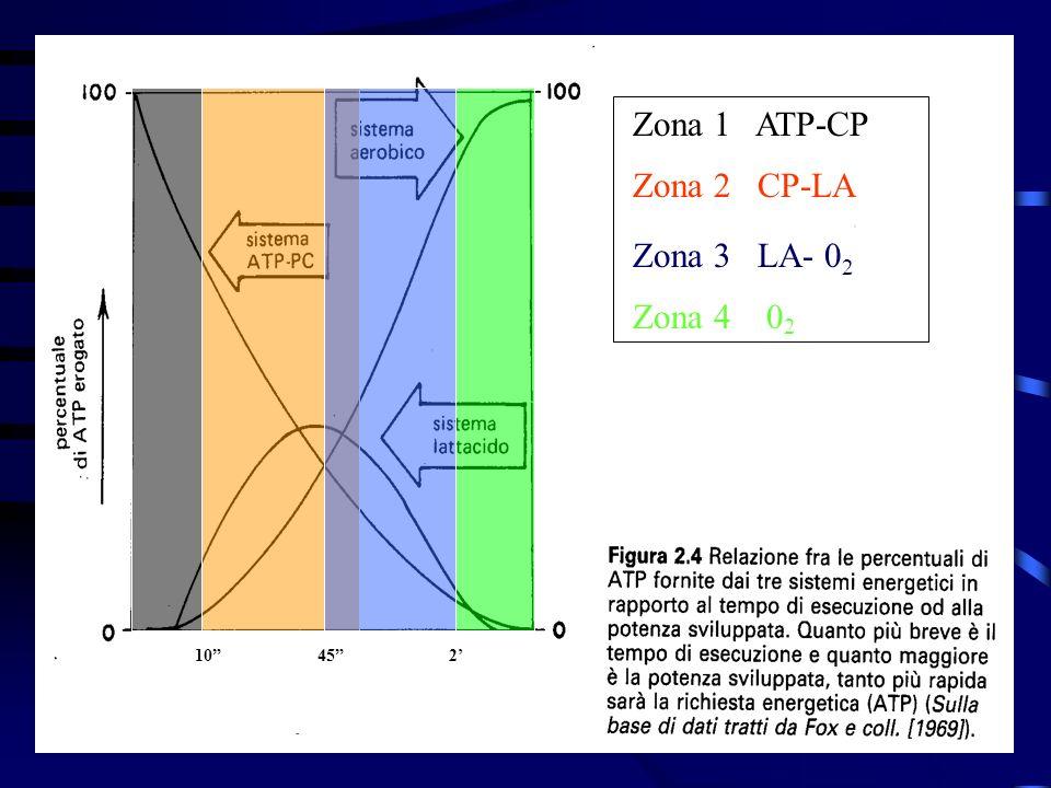Zona 1 ATP-CP Zona 2 CP-LA. Zona 3 LA- 02.