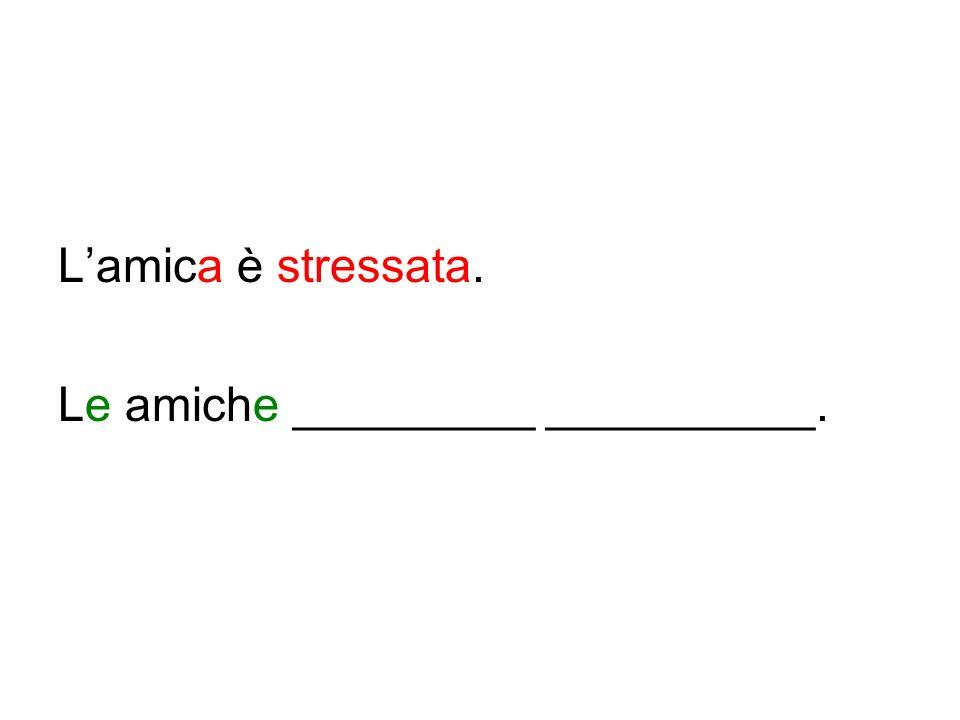L'amica è stressata. Le amiche _________ __________.