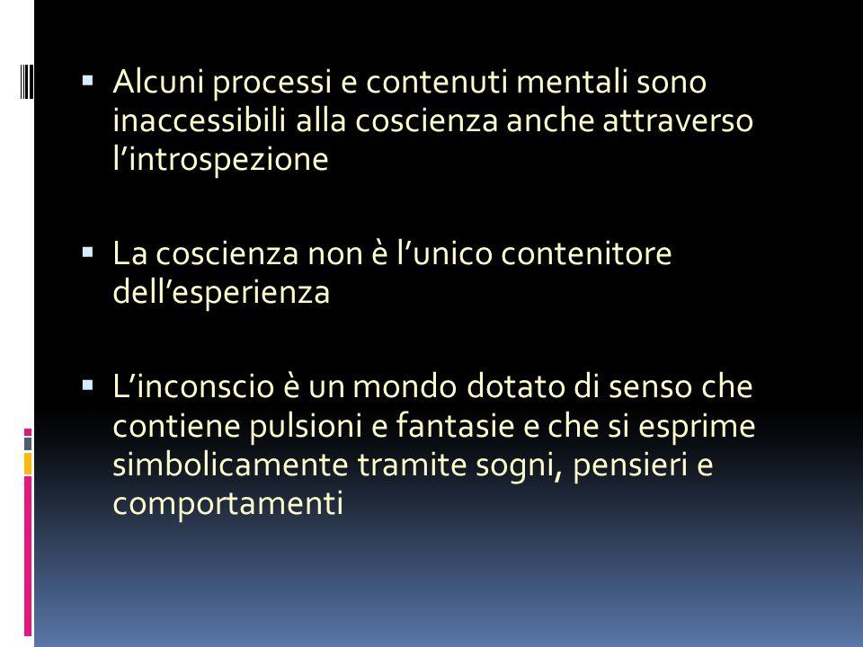 Alcuni processi e contenuti mentali sono inaccessibili alla coscienza anche attraverso l'introspezione