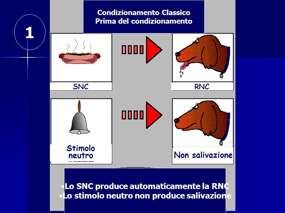 1 Stimolo neutro Non salivazione Lo SNC produce automaticamente la RNC