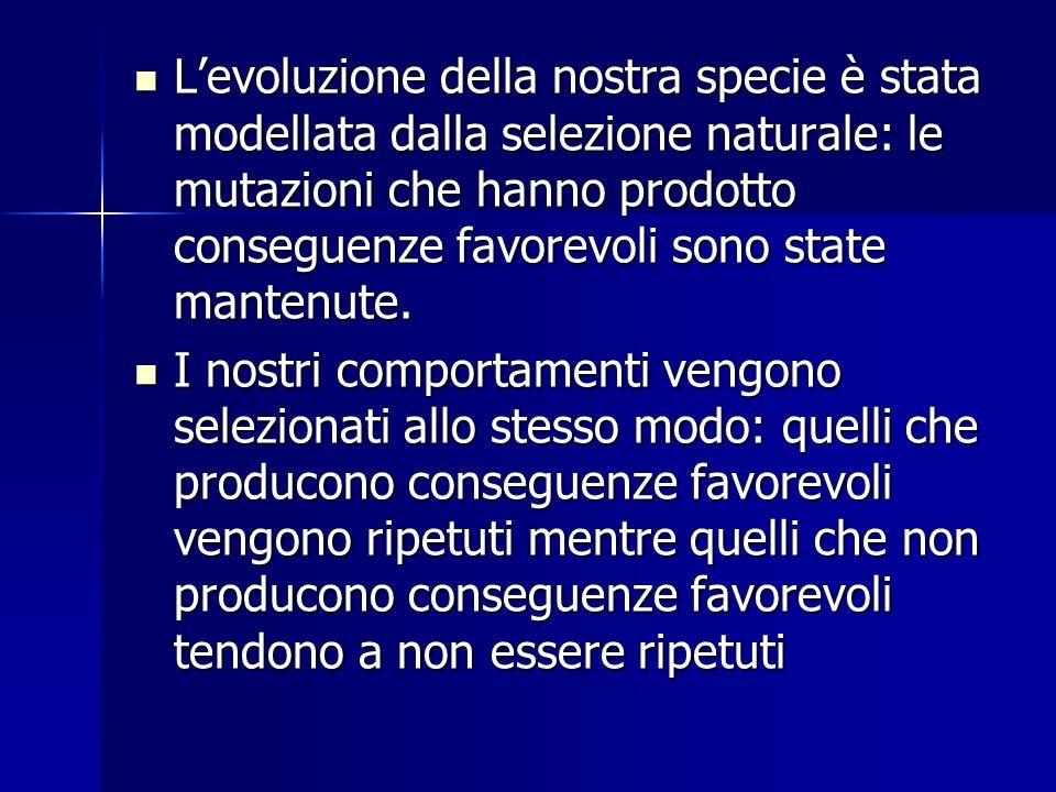 L'evoluzione della nostra specie è stata modellata dalla selezione naturale: le mutazioni che hanno prodotto conseguenze favorevoli sono state mantenute.