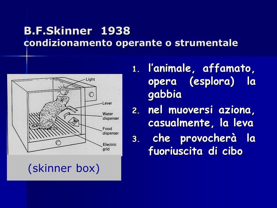 B.F.Skinner 1938 condizionamento operante o strumentale