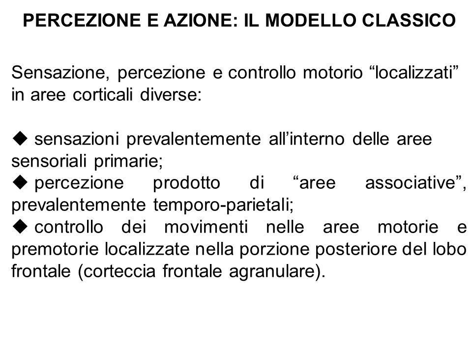 PERCEZIONE E AZIONE: IL MODELLO CLASSICO