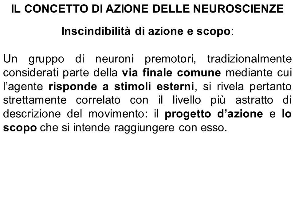 IL CONCETTO DI AZIONE DELLE NEUROSCIENZE