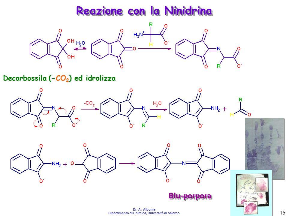 Reazione con la Ninidrina