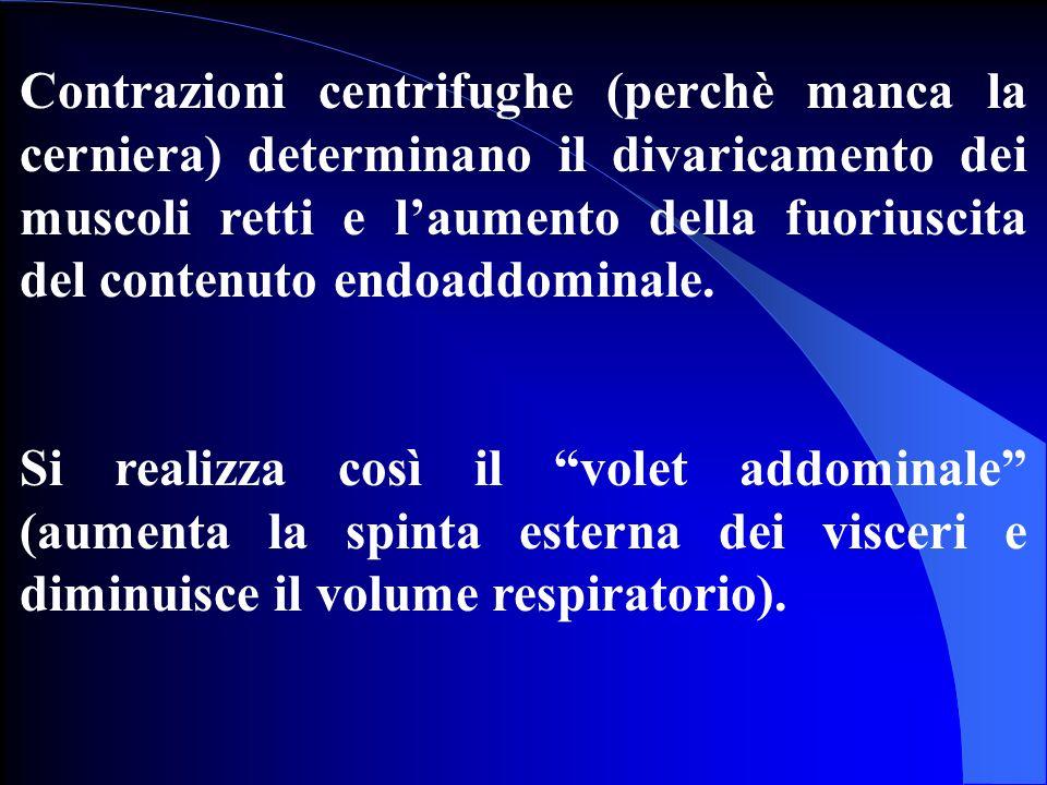 Contrazioni centrifughe (perchè manca la cerniera) determinano il divaricamento dei muscoli retti e l'aumento della fuoriuscita del contenuto endoaddominale.