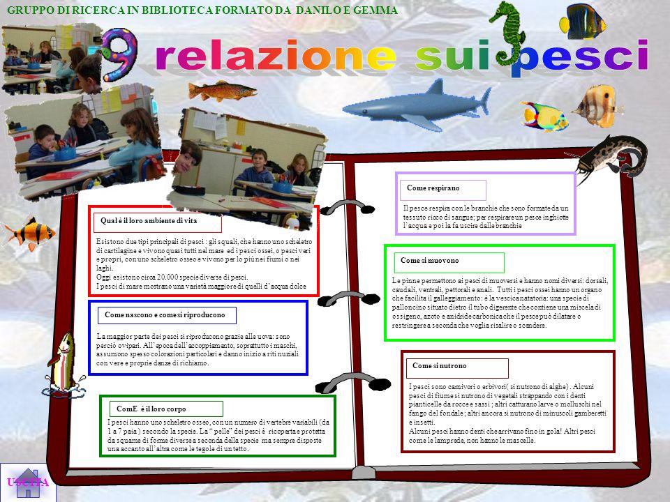 GRUPPO DI RICERCA IN BIBLIOTECA FORMATO DA DANILO E GEMMA. relazione sui pesci.