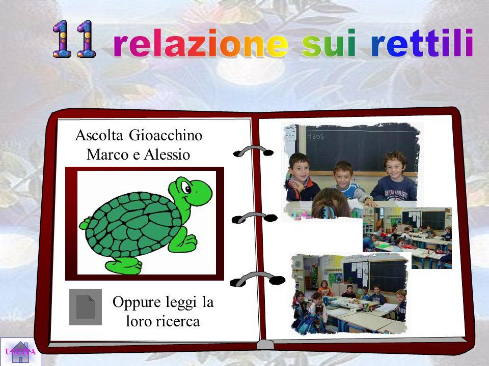 relazione sui rettili Ascolta Gioacchino Marco e Alessio
