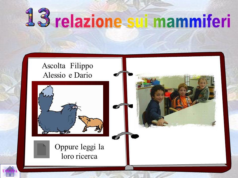 relazione sui mammiferi