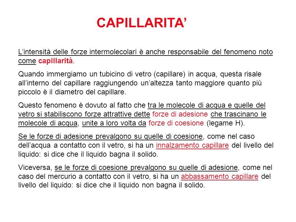 CAPILLARITA' L'intensità delle forze intermolecolari è anche responsabile del fenomeno noto come capillarità.