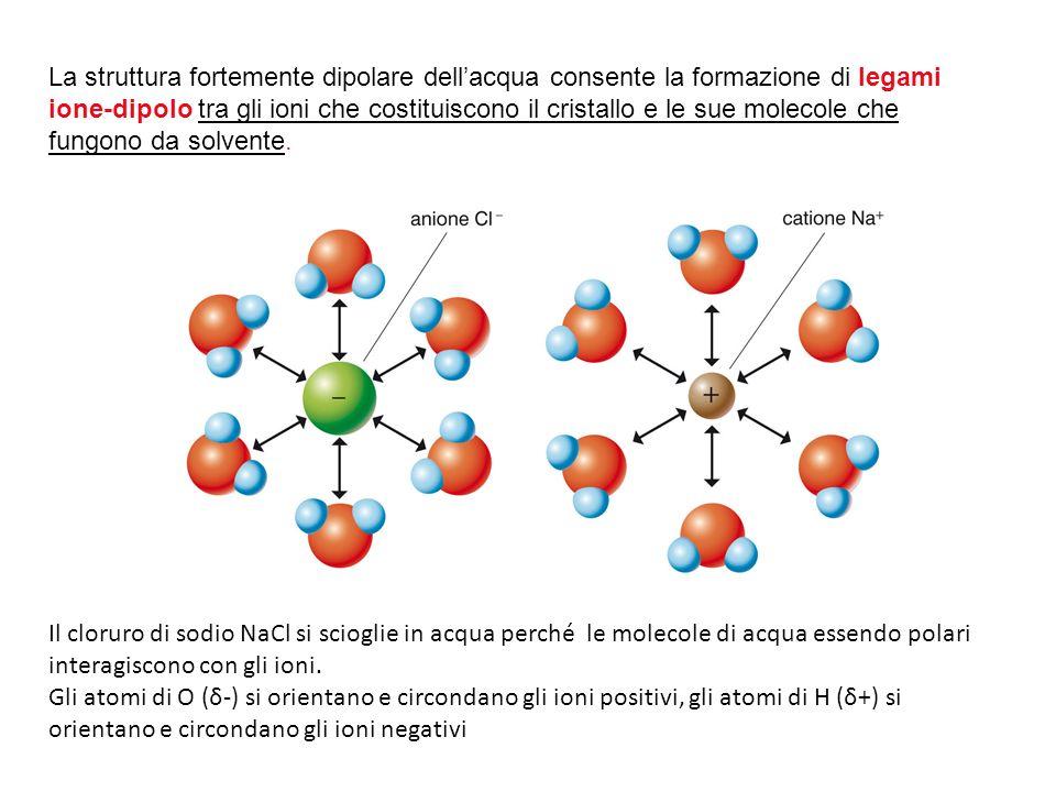 La struttura fortemente dipolare dell'acqua consente la formazione di legami ione-dipolo tra gli ioni che costituiscono il cristallo e le sue molecole che fungono da solvente.