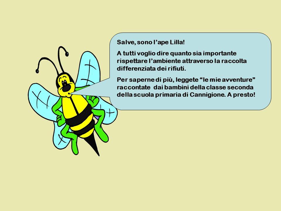 Salve, sono l'ape Lilla! A tutti voglio dire quanto sia importante rispettare l'ambiente attraverso la raccolta differenziata dei rifiuti.