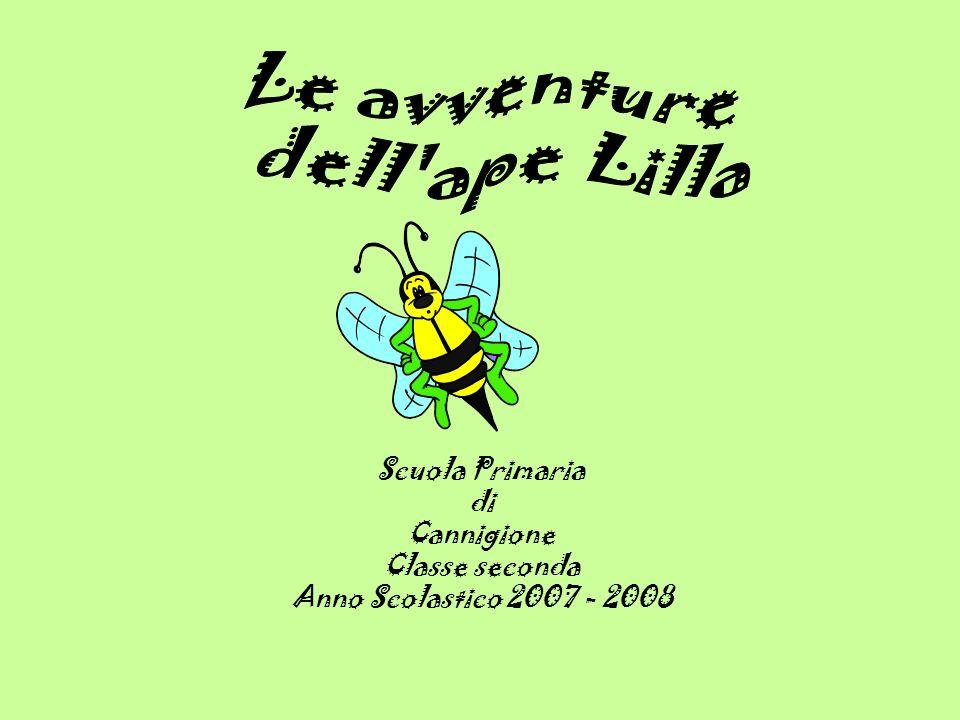 Le avventure dell ape Lilla Scuola Primaria di Cannigione