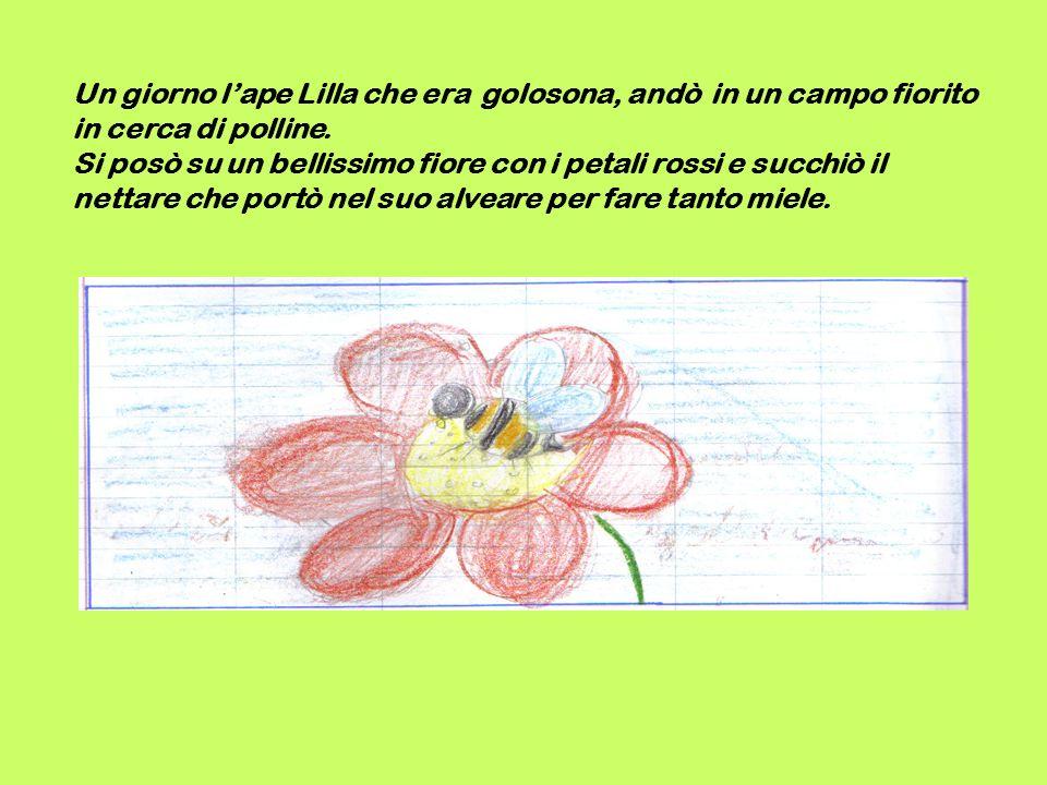 Un giorno l'ape Lilla che era golosona, andò in un campo fiorito in cerca di polline.