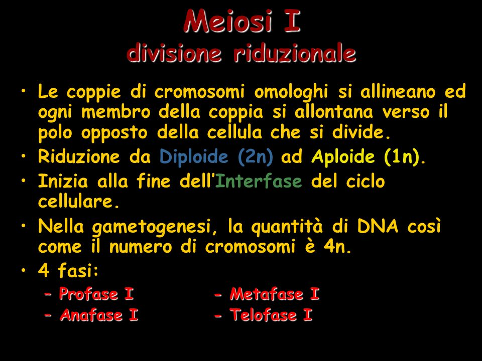 Meiosi I divisione riduzionale