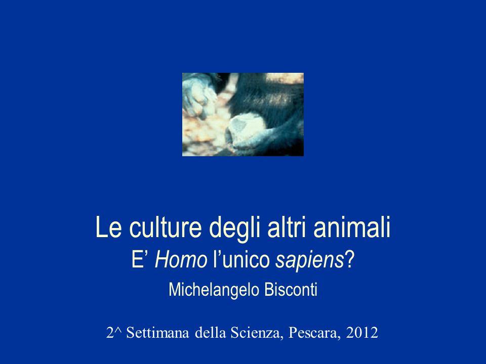 Le culture degli altri animali E' Homo l'unico sapiens