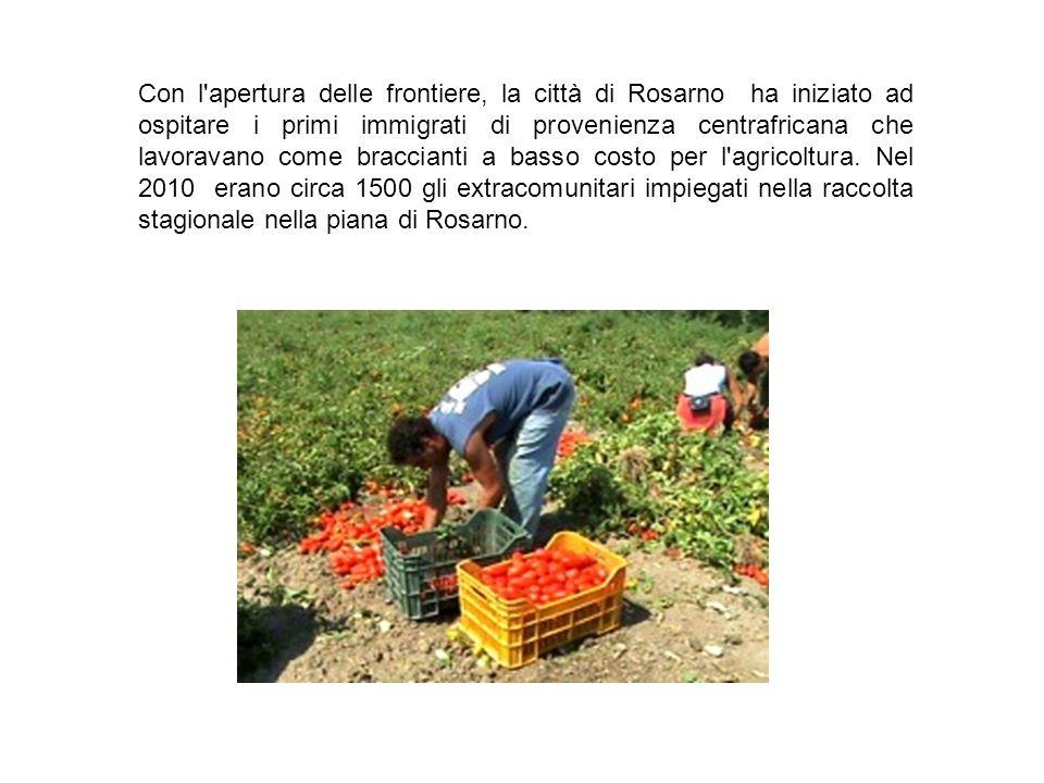 Con l apertura delle frontiere, la città di Rosarno ha iniziato ad ospitare i primi immigrati di provenienza centrafricana che lavoravano come braccianti a basso costo per l agricoltura.