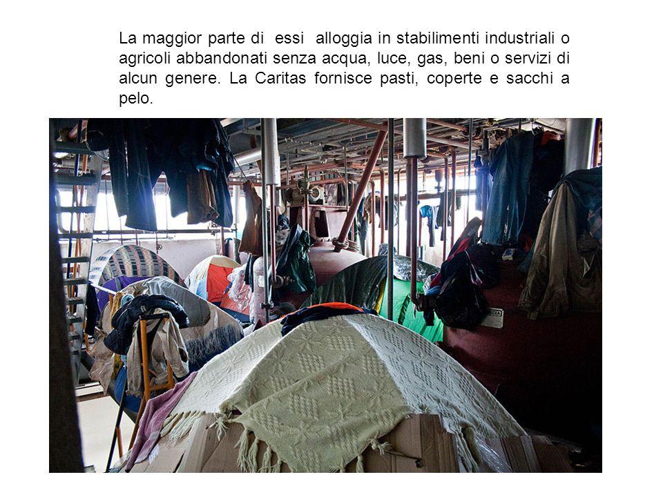 La maggior parte di essi alloggia in stabilimenti industriali o agricoli abbandonati senza acqua, luce, gas, beni o servizi di alcun genere. La Caritas fornisce pasti, coperte e sacchi a pelo.