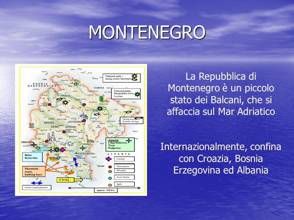 Internazionalmente, confina con Croazia, Bosnia Erzegovina ed Albania