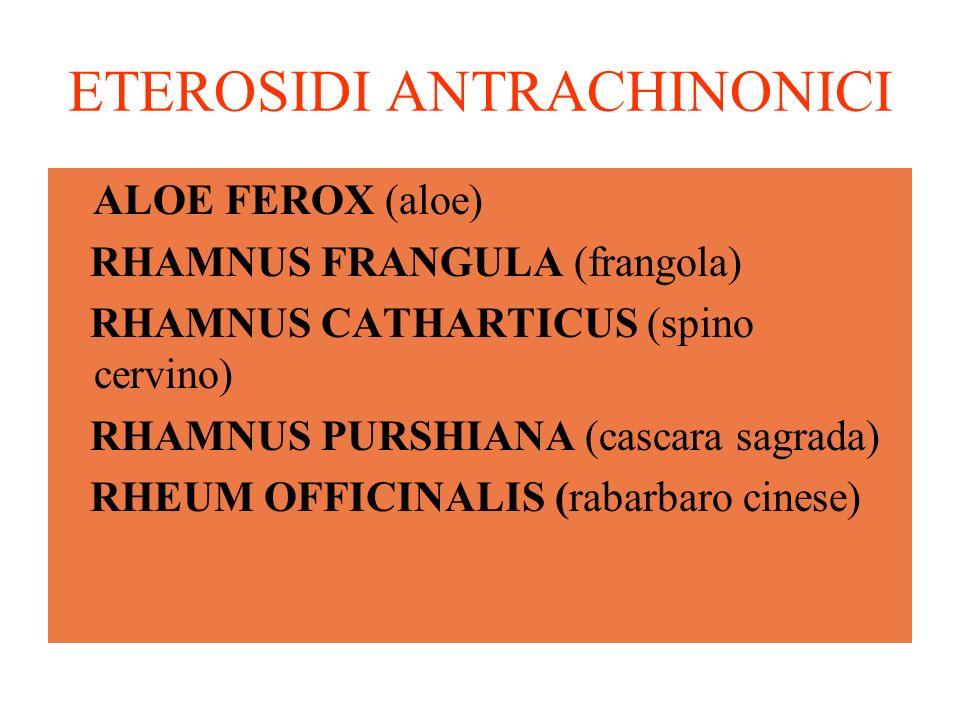 ETEROSIDI ANTRACHINONICI