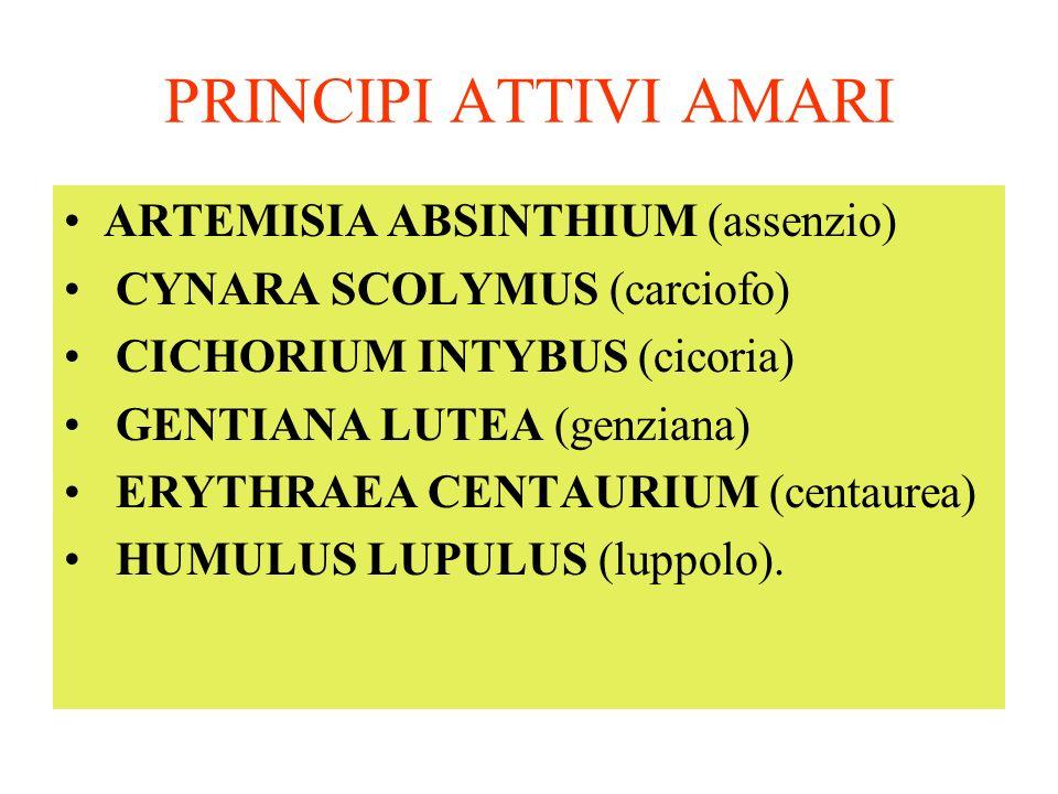 PRINCIPI ATTIVI AMARI ARTEMISIA ABSINTHIUM (assenzio)