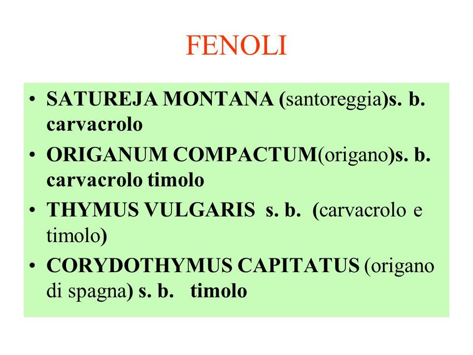 FENOLI SATUREJA MONTANA (santoreggia)s. b. carvacrolo