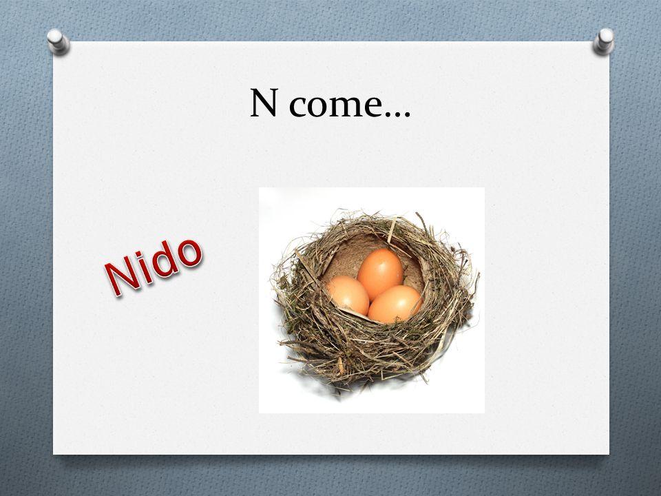 N come… Nido