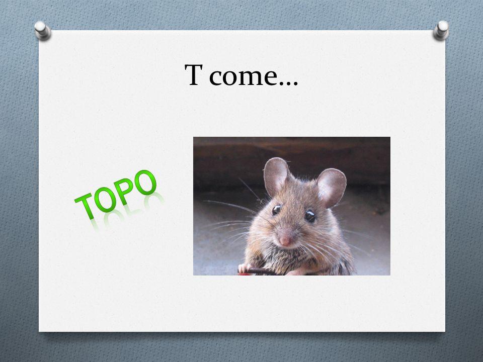 T come… Topo