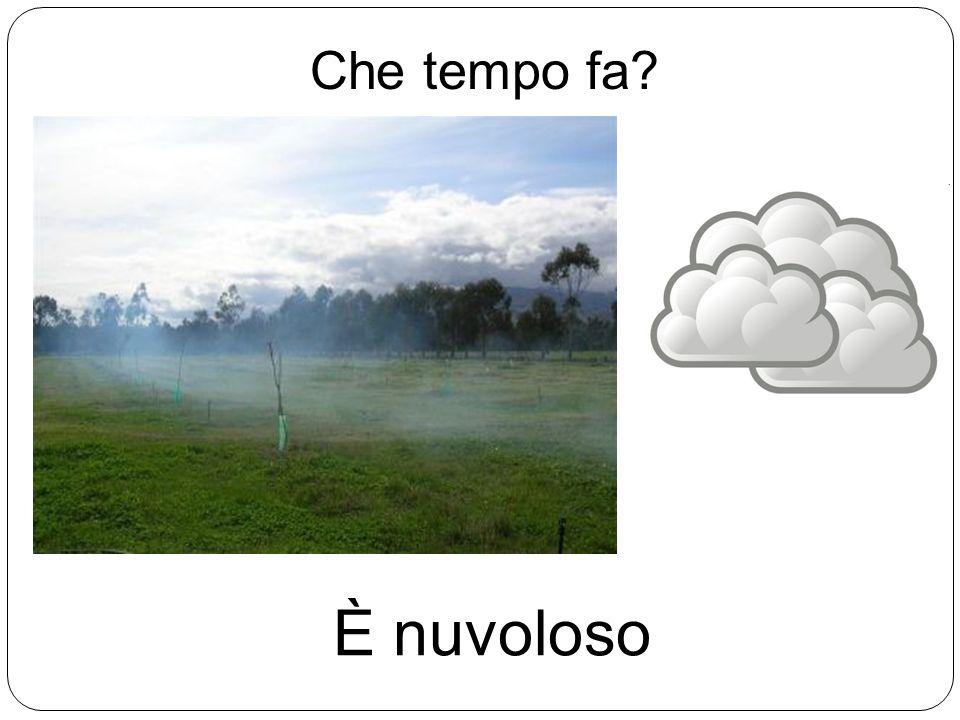 Che tempo fa È nuvoloso