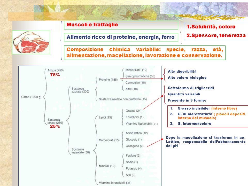 Alimento ricco di proteine, energia, ferro